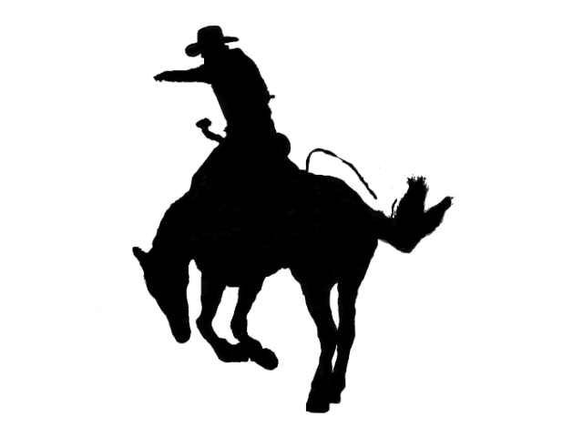 Rodeo Day – June 18, 2015