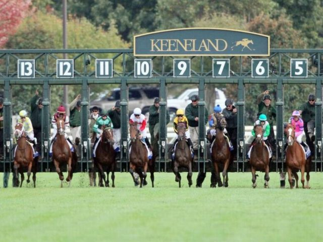 Keeneland Update and Kentucky Derby Preview