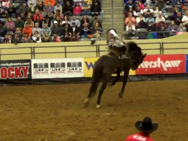 Lexington Rodeo 2016